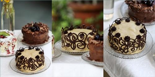 Kiwi-Strawberry Cream Cake, Espresso Coffee Cream Cake,Deep Chocolate with Burgundy Cherries Cake
