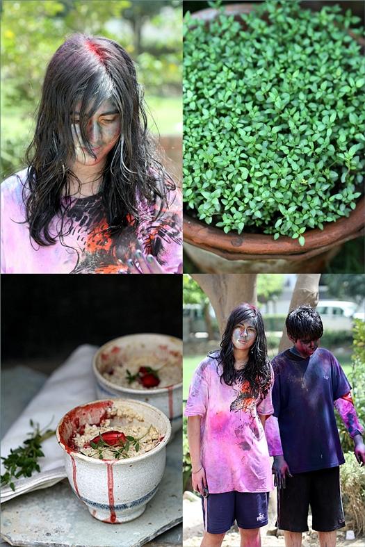 Holi - Indian summer