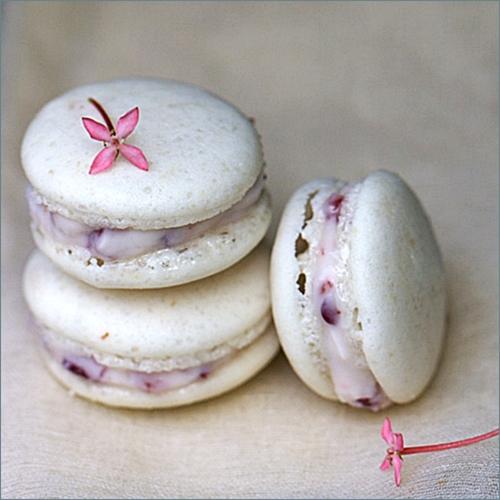 Macaron Recipe Filling Recipe Vanilla Macarons With