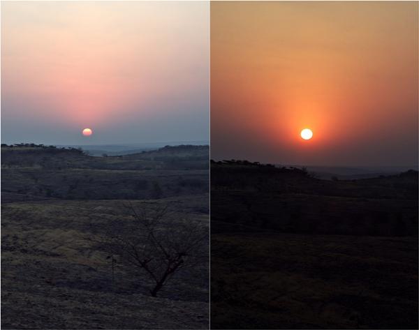Four Seasons Vineyards, Baramati, Pune, India