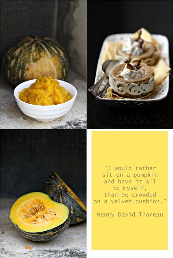 Pumpkin Custard Pies