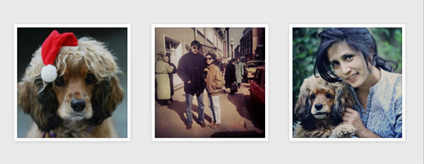 Instagram PAB