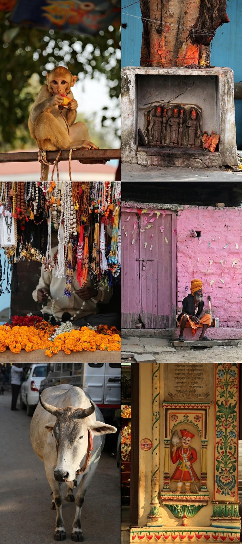 Banaras 2016